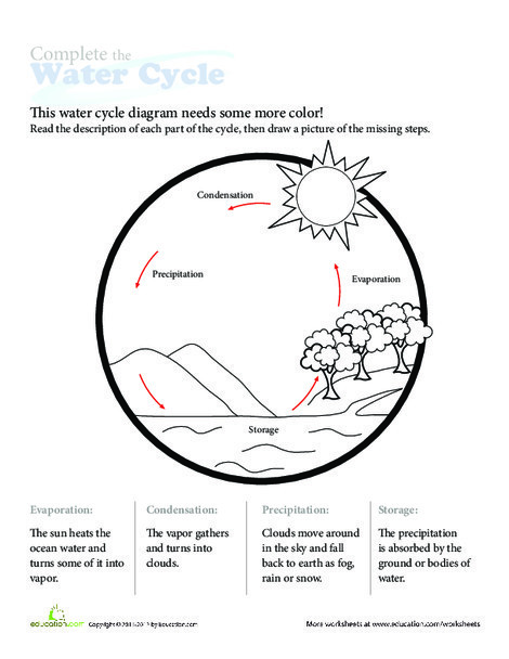 First Grade Science Worksheets: Water Cycle Diagram