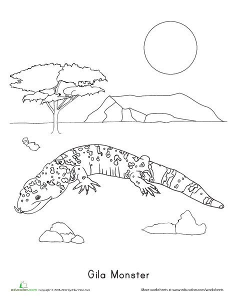 Second Grade Coloring Worksheets: Gila Monster Coloring Page