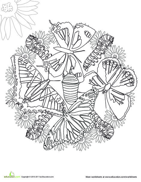 First Grade Coloring Worksheets: Color a Mandala: Butterflies