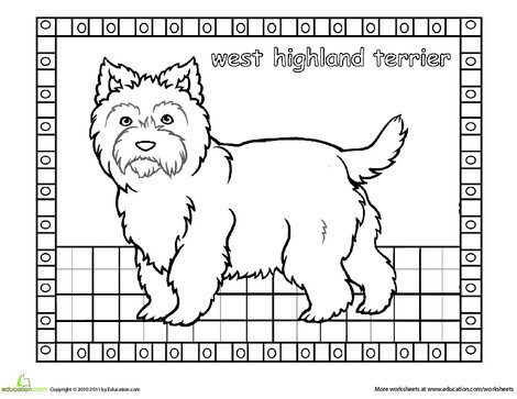 First Grade Coloring Worksheets: Color the West Highland Terrier