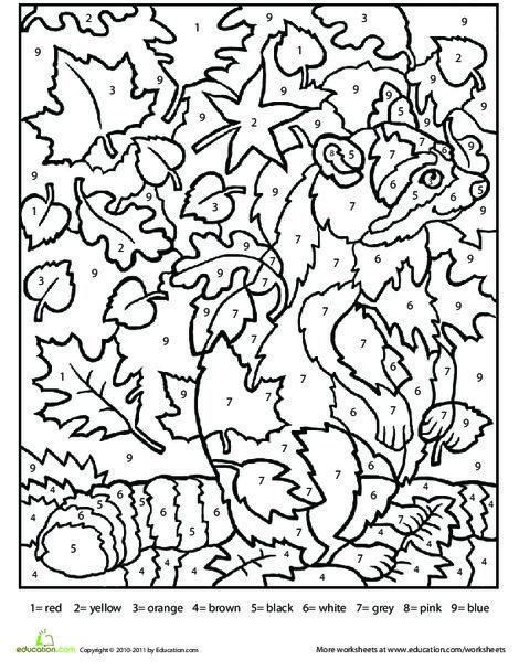Second Grade Seasons Worksheets: Color by Number Raccoon