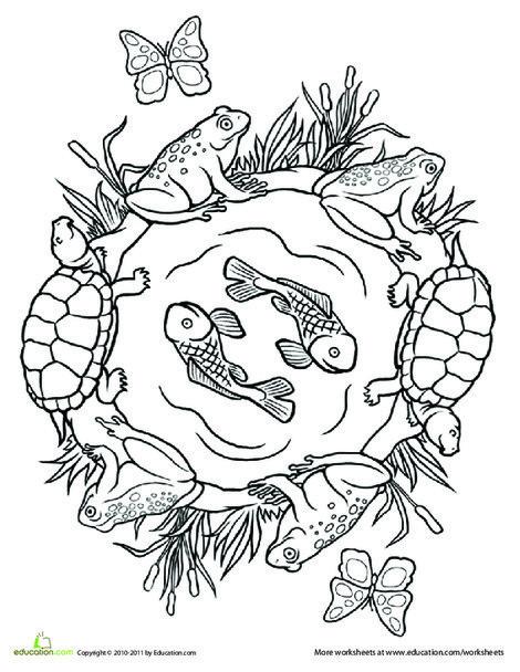 Second Grade Coloring Worksheets: Color a Mandala: Pond Life