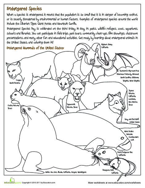 Second Grade Coloring Worksheets: Endangered Species Coloring Page