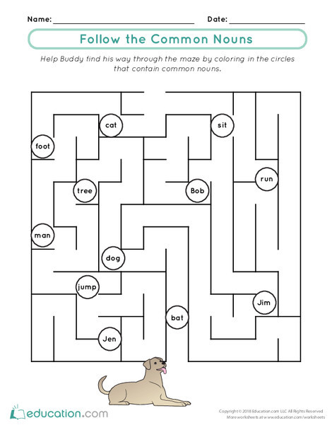 First Grade Reading & Writing Worksheets: Follow the Common Nouns