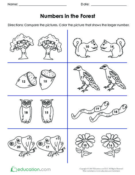 Kindergarten Math Worksheets: Numbers in the Forest