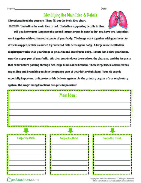 Fourth Grade Reading & Writing Worksheets: Identifying the Main Idea & Details
