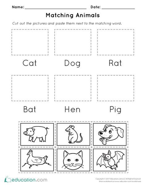 Kindergarten Reading & Writing Worksheets: Matching Animals
