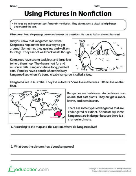 Third Grade Reading & Writing Worksheets: Using Pictures in Nonfiction