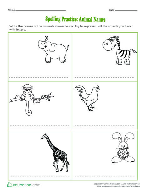 First Grade Reading & Writing Worksheets: Spelling Practice: Animal Names