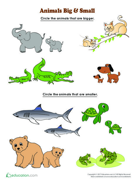 Kindergarten Math Worksheets: Animals Big and Small