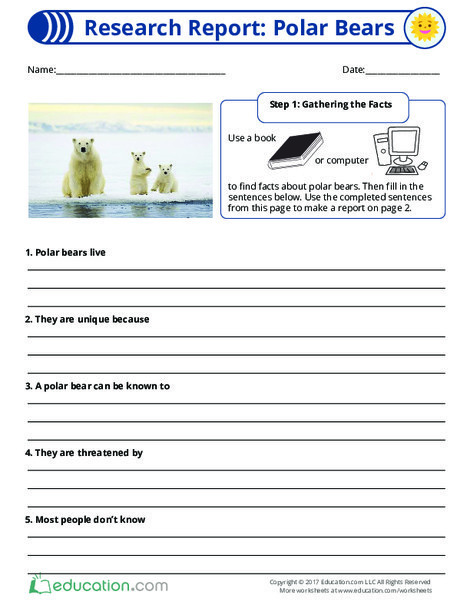Fourth Grade Reading & Writing Worksheets: Research Report: Polar Bears