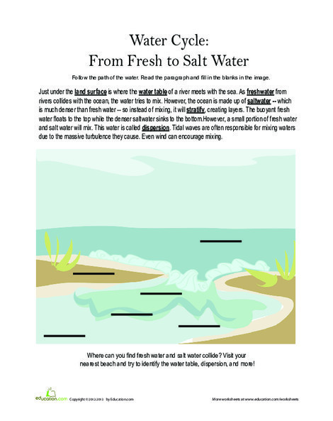 Third Grade Science Worksheets: Fresh Water and Salt Water