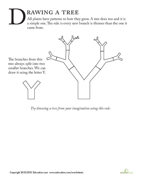 First Grade Fine arts Worksheets: How to Draw Trees