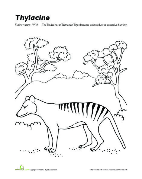 Second Grade Coloring Worksheets: Extinct Animals Coloring Page: Thylacine