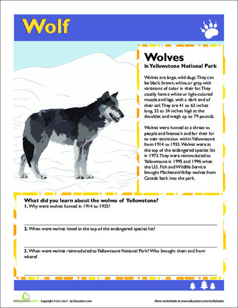 Third Grade Science Worksheets: Wolf