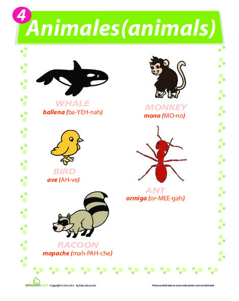 Fourth Grade Foreign language Worksheets: Animal Names in Spanish