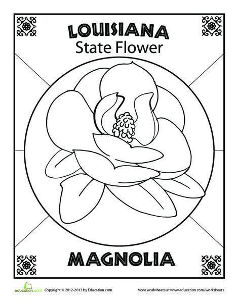 First Grade Coloring Worksheets: Louisiana State Flower