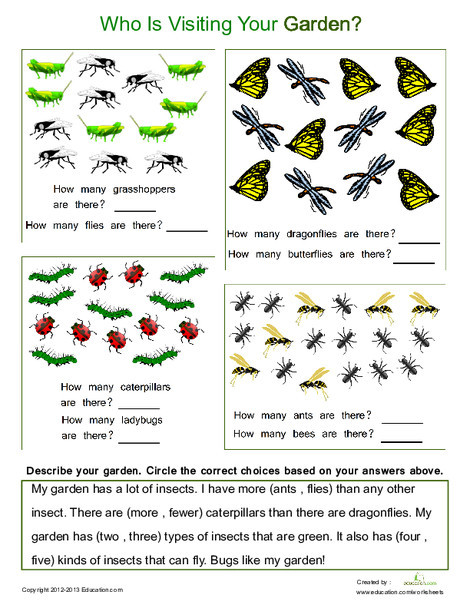 Kindergarten Math Worksheets: Counting for Kids #3