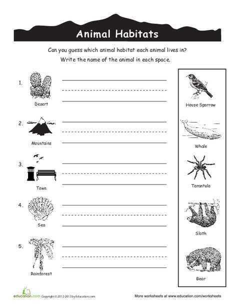 First Grade Science Worksheets: Animal Habitats for Kids