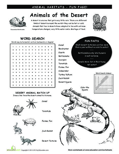 Third Grade Science Worksheets: Animal Habitats: Deserts