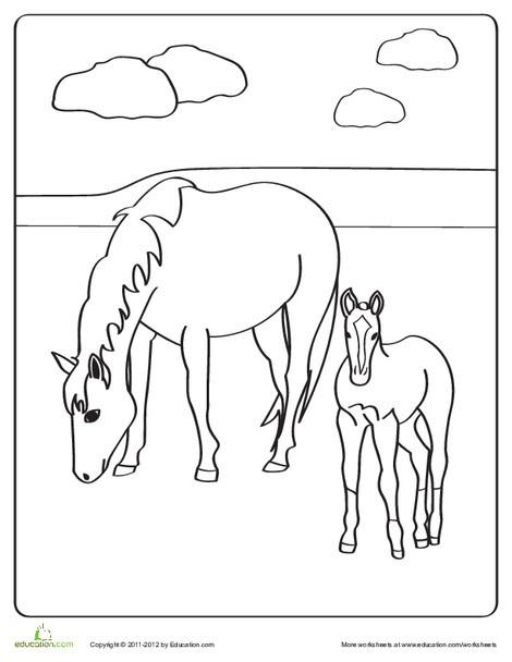 Preschool Coloring Worksheets: Horse and Foal Coloring Page