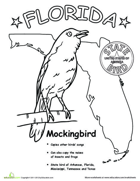 First Grade Coloring Worksheets: Florida State Bird