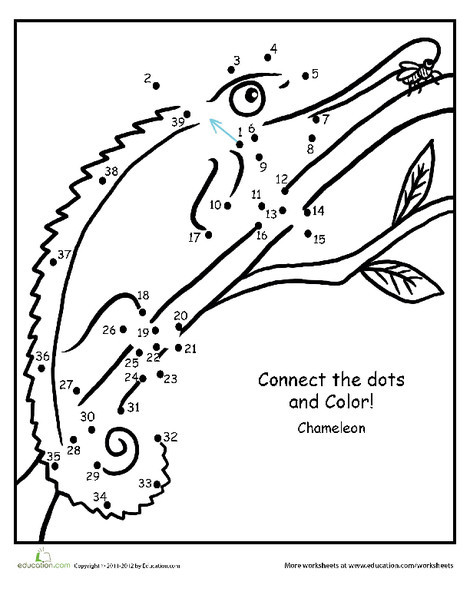 First Grade Math Worksheets: Chameleon Connect the Dots