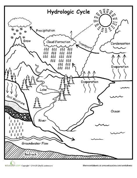 Fifth Grade Science Worksheets: Water Cycle Chart