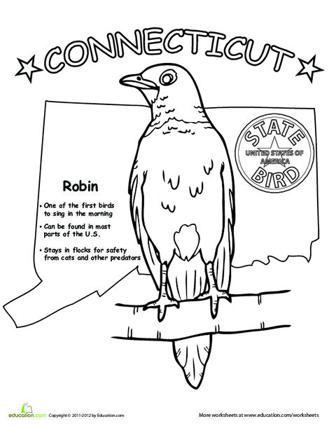 First Grade Coloring Worksheets: Connecticut State Bird
