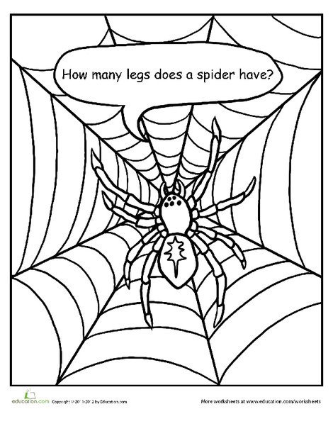 Preschool Math Worksheets: How Many Legs Does a Spider Have?