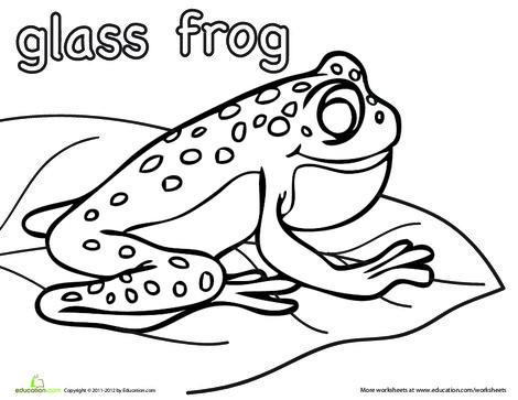 Kindergarten Coloring Worksheets: Color the Glass Frog