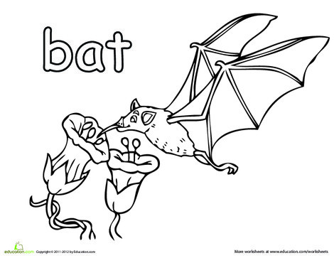 First Grade Coloring Worksheets: Fruit Bat Coloring Page