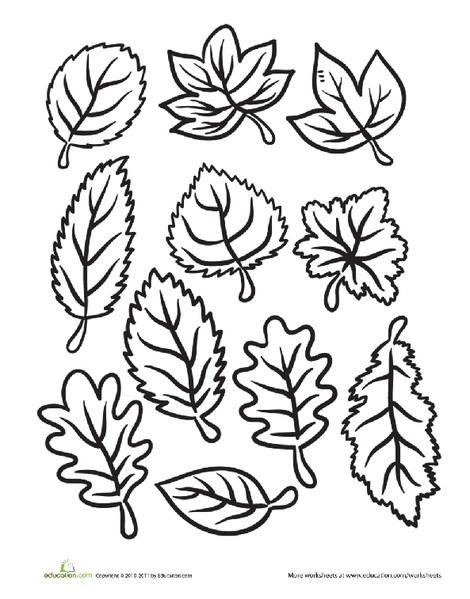 Kindergarten Seasons Worksheets: Color the Fall Leaves