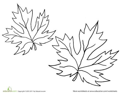 Kindergarten Seasons Worksheets: Maple Leaf Coloring Page