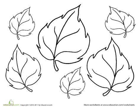 Kindergarten Seasons Worksheets: Coloring Fall: More Leaves