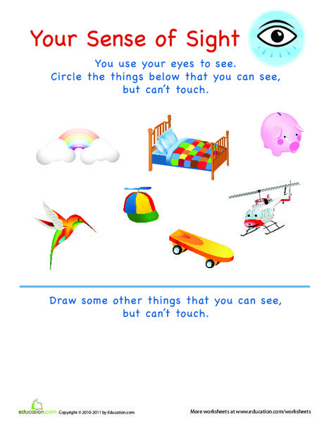 Preschool Science Worksheets: Sense of Sight