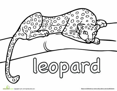 Kindergarten Coloring Worksheets: Leopard Coloring Page