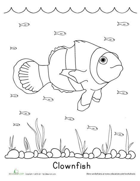 Kindergarten Coloring Worksheets: Color the Clownfish