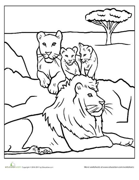 Kindergarten Coloring Worksheets: Color the Lion Pride