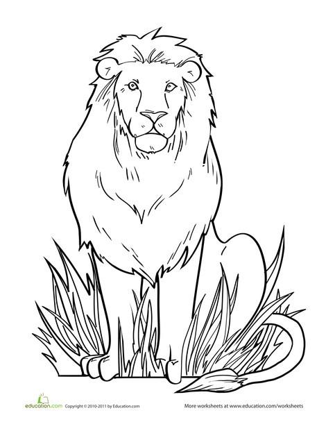 Kindergarten Coloring Worksheets: Lion Coloring Page