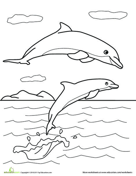 Preschool Coloring Worksheets: Color the Dolphin Pals