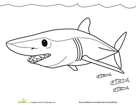 Preschool Coloring Worksheets: Color the Mako Shark