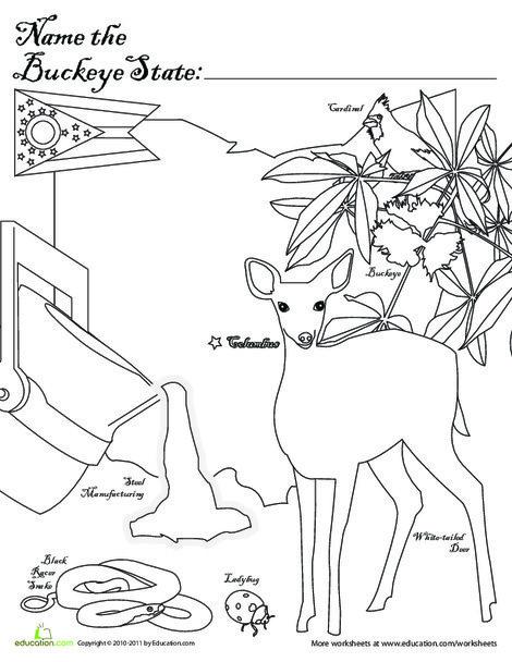First Grade Social studies Worksheets: Buckeye State