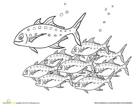 Preschool Coloring Worksheets: Color the School of Fish