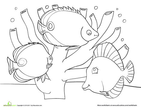 Preschool Coloring Worksheets: Coral Reef Coloring Page