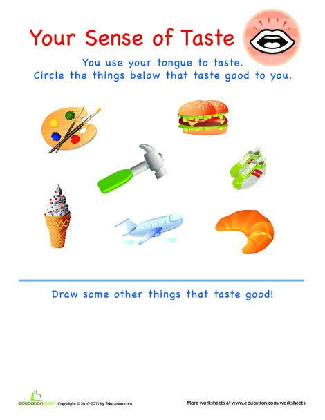 Preschool Science Worksheets: Your Sense of Taste
