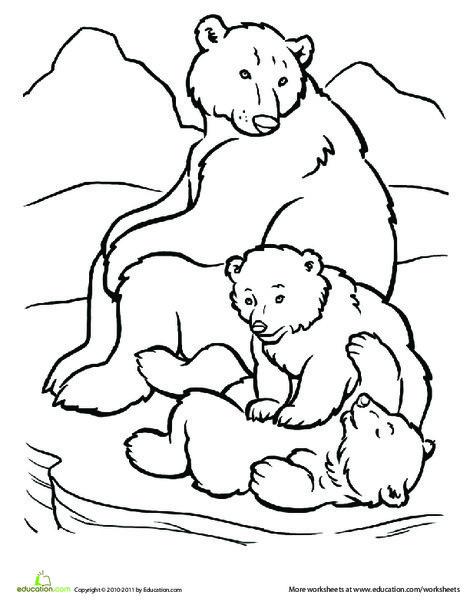 Kindergarten Coloring Worksheets: Polar Bear Family Coloring Page
