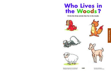 Kindergarten Science Worksheets: Who Lives in the Woods?