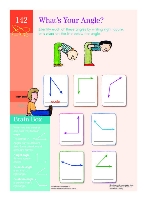 Third Grade Math Worksheets: Types of Angles